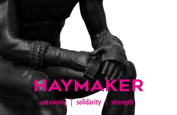 haymaker images - 23.png